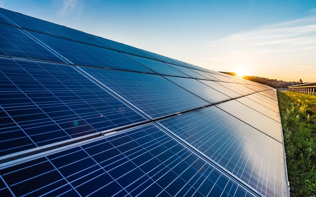 GemeenteBelangen komt omwonenden zonnepark Tripkouw in Midwoud tegemoet